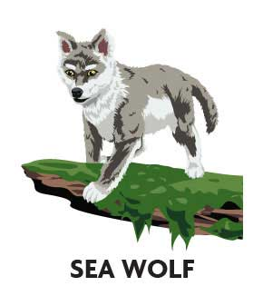 animal-profile-sea-wolf
