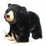 Black-Bear-fluffy-toy-600x600