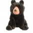 Arlo Black Bear